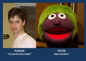 Flesh v Felt