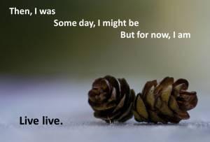 Live live cones