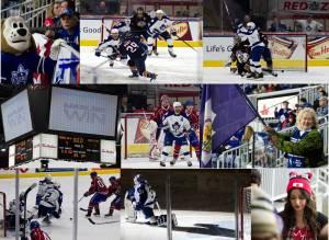 Memories of the 2013-14 hockey season