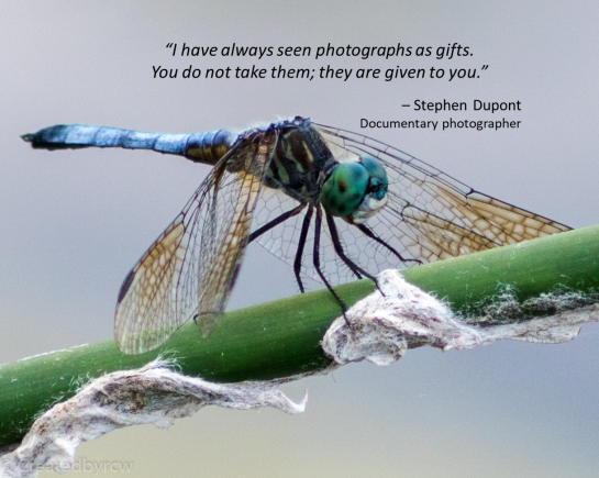 Dupont quote